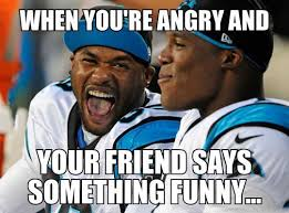Carolina Panthers Memes - cam newton angry meme dubsism