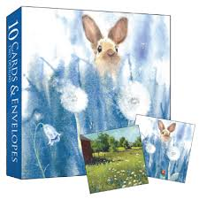 boxed set of 10 notelets rabbit meadow karenza paperie