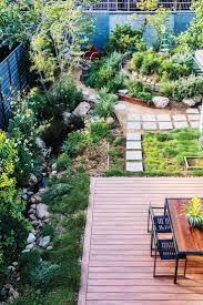 california native plants landscaping the 25 best theodore payne ideas on pinterest