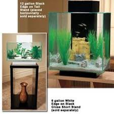 fluval edge aquariums worth the money the fluval edge aquarium