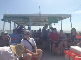 Delaware Snorkeling images Egmont key snorkeling trip in st petersburg florida how do i travel jpg