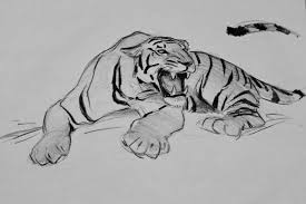 animation design drawings packing u0027ve