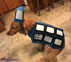 Halloween Costume Ideas For Pets 278 Best Costume Ideas For Pets Images On Pinterest Costume