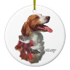 spaniel ornaments keepsake ornaments zazzle