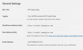 Domain Manager Title Successfully Launching Your Wordpress Site Wordpress Hosting By