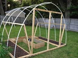 Greenhouses For Backyard Unbelievable 50 Diy Greenhouse Grow Weed Easy