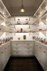 luxury pantry ideas design accessories u0026 pictures zillow digs