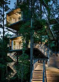 mithun erects the sustainability tree house in the dense forest of