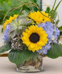 sunflower delivery sunflowers succulents same day delivery los angeles ca