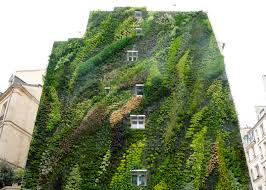 garden ideas amazing vertical gardening ideas pinterest and