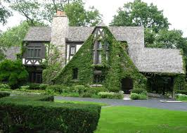 rustic house design rambling plants stone chimney classic sloping