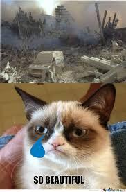 Mean Cat Memes - mean cat p by stanton meme center