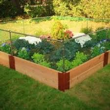 Small Backyard Vegetable Garden by My Backyard Vegetable Garden Backyard Vegetable Gardens