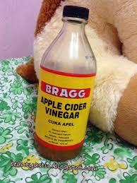 Minyak Kelapa Di Supermarket bragg apple cider vinegar cuka apel beautyasti1