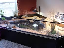 Cheep Aquarium Turtle Home Decor  How To Turtle Home Decor In - Habitat home decor