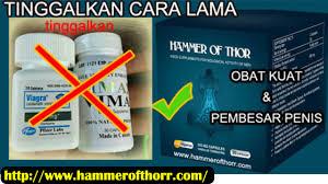 blog artikel obat kuat thor s hammer dan obat pembesar penis