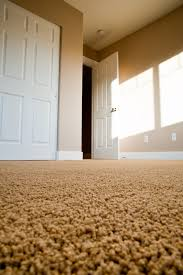 Scotchgard Wool Rug Scotch Guard Protection Carpet Cleaning In Elkhart In