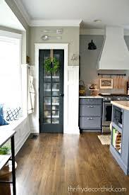 kitchen pantry door ideas cool pantry doors marshalldesign co