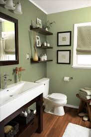 Brown Bathroom Cabinets by Best 20 Green Bathrooms Ideas On Pinterest Green Bathrooms