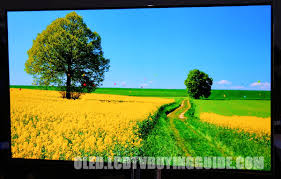 oled tv vs 4k led uhd tv which is better 10 point test 2017