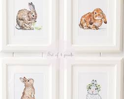 rabbit nursery rabbit nursery etsy
