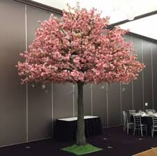 cherry blossom trees archives harbourside decorators
