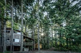 luxury treehouse in washington state glamping in washington