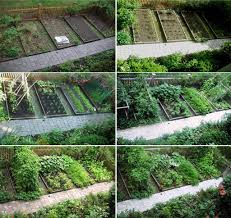 home kitchen garden design small vegetable garden design garden garden ideas spectacular how
