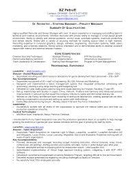 sample resume recruiter recruiter resume example sample it