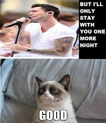 Angry Cat Good Meme - http tsaoshin deviantart com art one more night grumpy cat meme