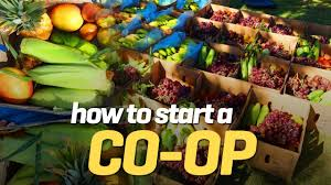 how to start your own fruit u0026 veg co op youtube