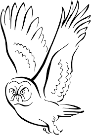 animations a 2 z coloring pages of owls