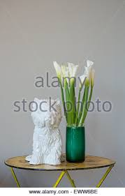 Calla Lily Vase Life Vase Calla Lily Flowers Green Stems Fireplace Living Room