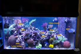 reef tank lighting schedule mr saltwater tank s led experiment mr saltwater tank