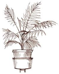 art by products houseplant sketch 2002