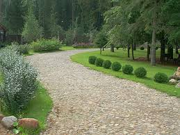 garden paths garden paths and footpath in my garden pictures and photos