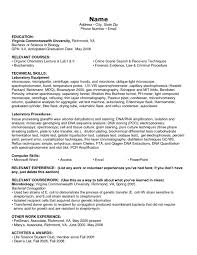 Listing Skills On Resume Examples by Listing Technical Skills On Resume Examples Free Resume Example