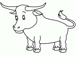 bulls colouring pages coloring pages bulls coloring pages