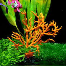 fish tanks for homes promotion shop for promotional fish tanks for