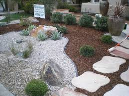 front yard amys office low low maintenance tropical landscaping