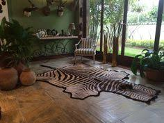 Genuine Zebra Rug African Genuine Zebra Skin From Cowhidesusa Com Inspiration