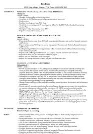 resume template financial accountants definition of respect accounting reporting resume sles velvet jobs