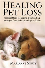 coping with loss of pet healing pet loss practical steps for coping and comforting