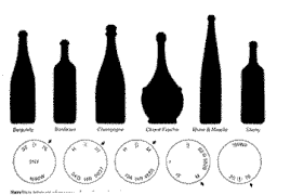 unique shaped wine bottles meaning of wine bottle sizes and shapes