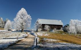 Winter Houses Winter Architecture First Trees Snow Tree Peaceful Road Nature