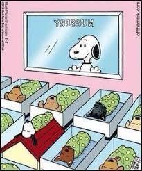 Snoopy Rug 81k Vind Ik Leuks 8 384 Reacties Snoopy And The Peanuts Gang