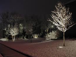 Landscape Lighting Ideas Trees Landscape Lighting Ideas Invisibleinkradio Home Decor