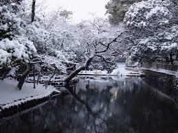 winter garden snow japanese