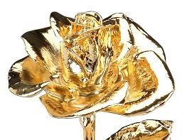 dipped in gold gold dipped roses dipped in gold goldflorist