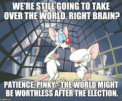 Pinky And The Brain Meme - pinky and the brain imgflip
